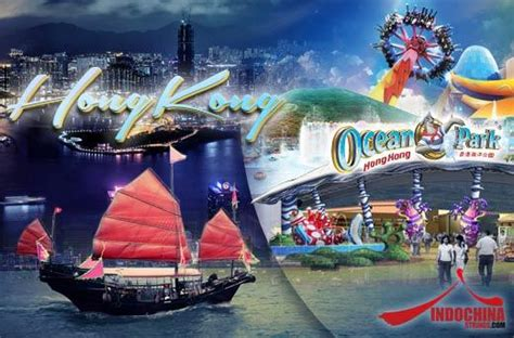 hong kong  package promo  ocean park