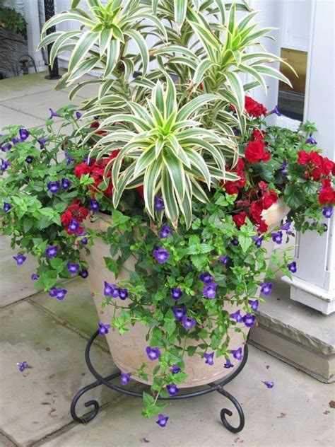 Plant Containers 25 Best Ideas About Container Gardening On