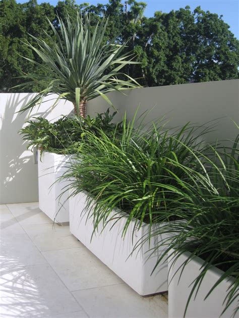 planter design concrete planter box designs homesfeed