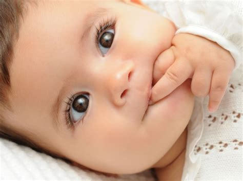 imagenes bebe negro gen 233 tica en los ni 241 os i