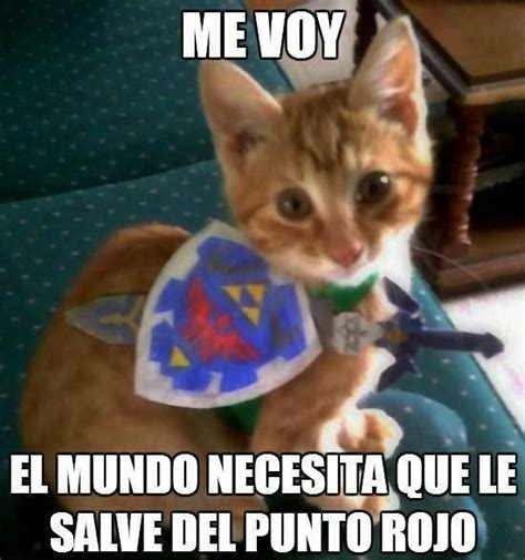 imágenes chistosos com best 25 memes de animales chistosos ideas on pinterest