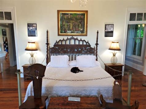 hemingway home key west ernest hemingway house is home to six toed cats and papa s