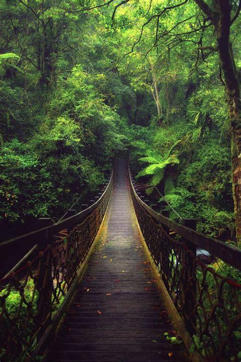 Minisoda B B Yilan Taiwan Asia 126 best places to go taiwan images on taiwan