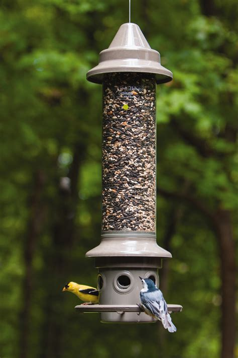 Eliminator Feeder wbu eliminator squirrel proof feeder