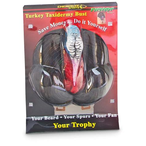 turkey fan mount kit turkey tail and beard fan mounting kit 660484 taxidermy