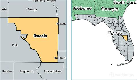 Osceola County Fl Search Related Keywords Suggestions For Osceola Florida