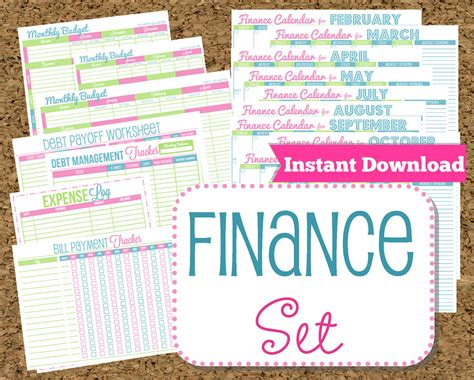 instant download finance organizer set budget and bill pay