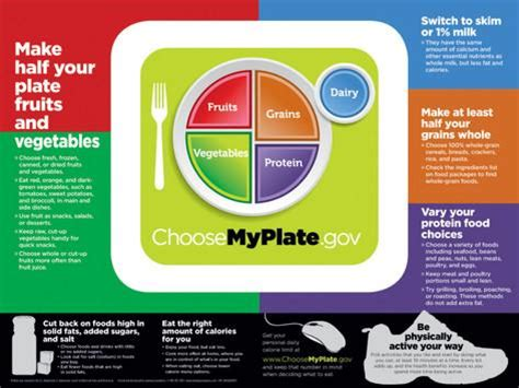 Usda Address Search Usda Myplate Poster Allposters Co Uk