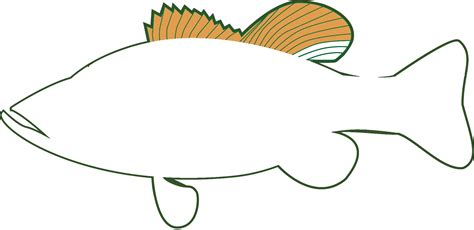 bass clip clipart bass fish jumping bass clip vector bass fish