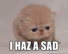 Sad Meme Generator - i haz a sad super sad cat meme generator