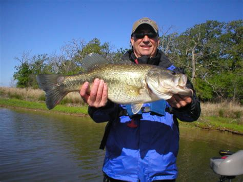 lake fork fishing report  april