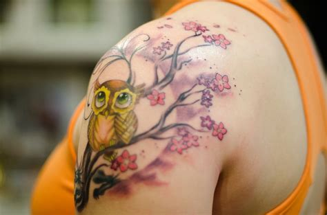 owl tattoo cherry blossom 14 best images about tattoos on pinterest cherry blossom