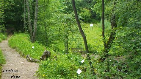 giardino botanico carsiana nomdeplume giardino botanico carsiana