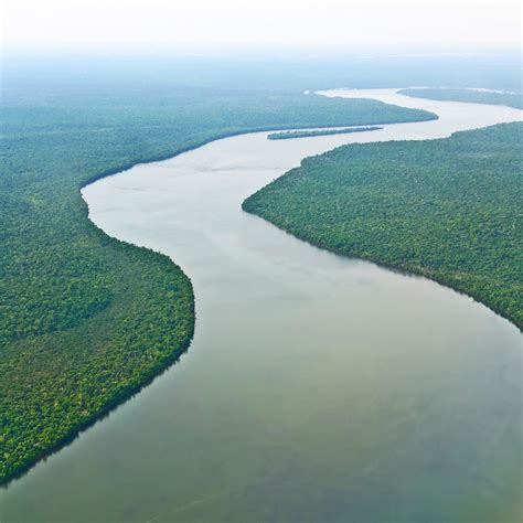 amazon amazon amazon river rivers pinterest