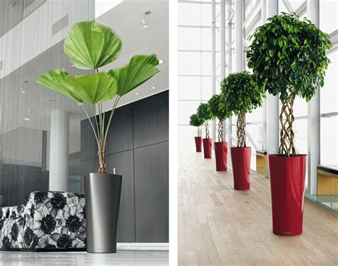 planters modern outdoors trendir
