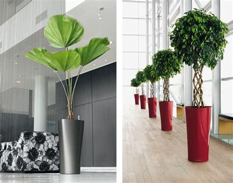 modern plant pots modern planter delta from lechuza modern outdoors