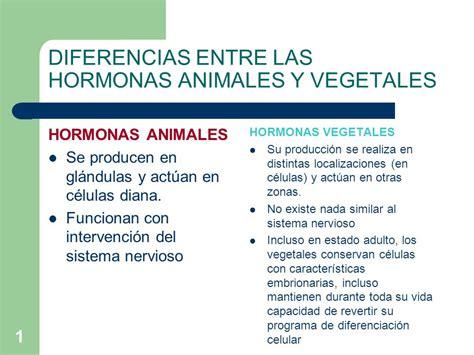 semejanzas y diferencias en las principales corrientes de diferencias entre las hormonas animales y vegetales ppt