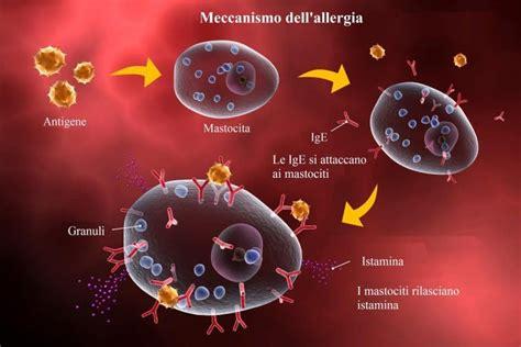 alimenti contengono albumina reazione allergica da puntura di insetto o farmaci