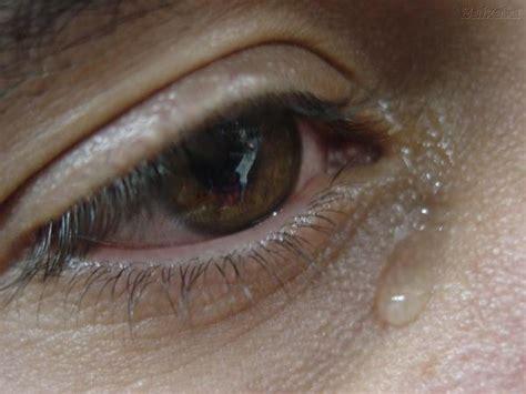imagenes de ojos de hombre llorando ojo llorando por amor imagui