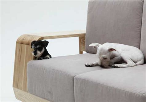 dog friendly couch modern sofa design with indoor dog house keeps pets and