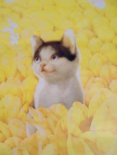 mail muramatsu k jp loc us makoto muramatsu ilustraciones infantiles pinterest