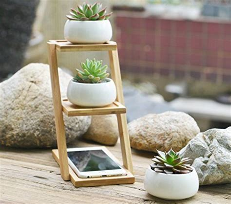 modern mini painted plant pots jusalpha 3 2 inches ceramic modern decorative small round