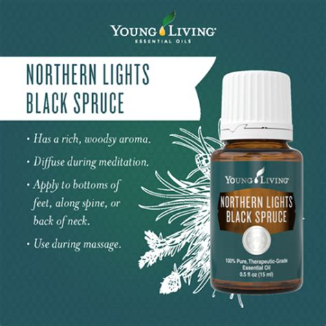 northern lights black spruce essential oil northern lights grand opening fort nelson bc the