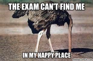 Ostrich Meme - funny ostrich memes memes