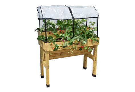 strawberry planter kit vegtrug