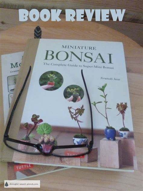 libro create your own bonsai miniature bonsai a book review