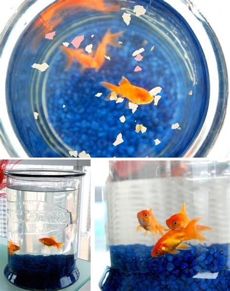 fish tank in bedroom feng shui the art of feng shui to make your home pretty and harmonious