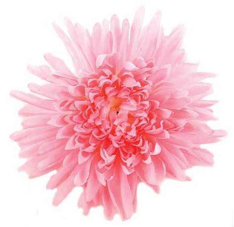 mum flower arrangement pink jpeg 21 quot pink spider silk floral bush