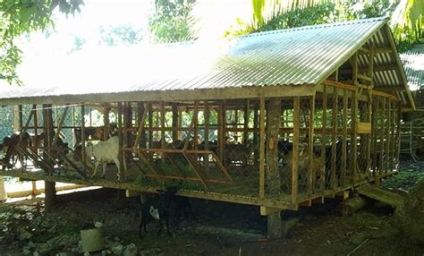 goat housing design goat farm house design house design