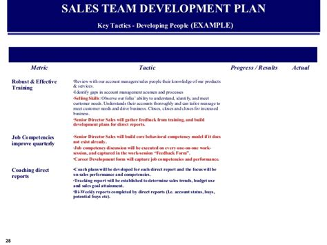 Exle Global Sales Marketing Business Plan Sales Development Plan Template