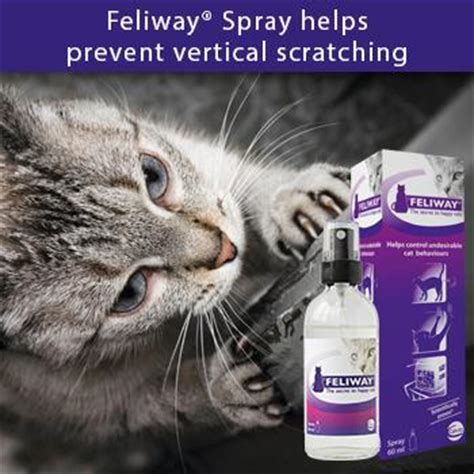 stop cat scratching spray feliway spray 60ml co uk pet supplies