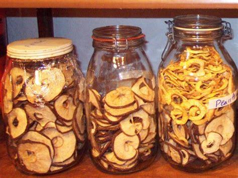 essiccazione alimenti essiccare in casa guida all essicazione degli alimenti