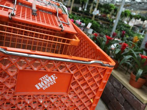 attack prompts home depot to consider pet ban