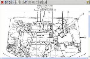 2001 hyundai elantra engine diagram car interior design