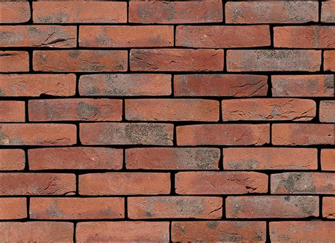 Bricks Wange Paradise 33042n carmine gs vandersanden bricks