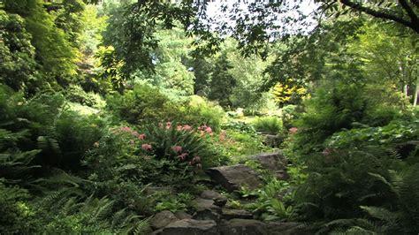 new york botanical garden press treasures of new york the new york botanical garden