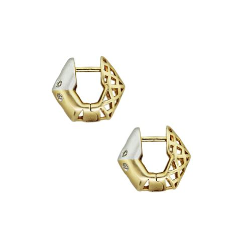 Huggie The gold and huggie earrings