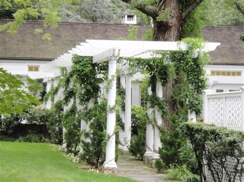 Arbor Garden Zone Vine Covered Trellis And Pergola Zone 6