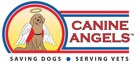 service for veterans with ptsd canine service dogs service dogs for veterans with ptsd