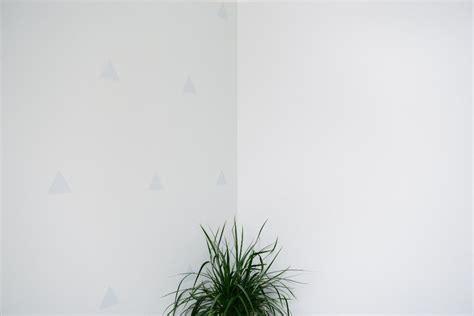 Colori Per Illuminare Una Stanza Buia by Semplici Consigli Per Illuminare Una Stanza Buia Casa It