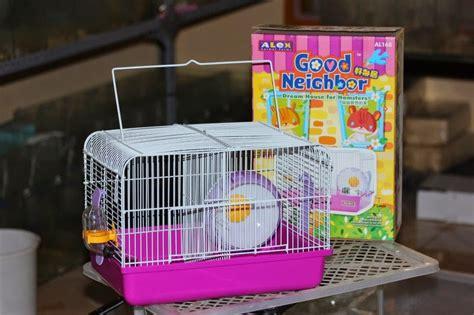 Kandang Hamster Hamster Cage Apple jual perlengkapan kandang dan aksesoris hamster