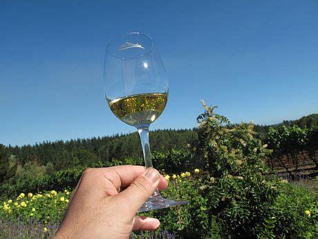 cadena productiva vitivinicola empresas vitivin 237 colas de la araucan 237 a reciben fondo de