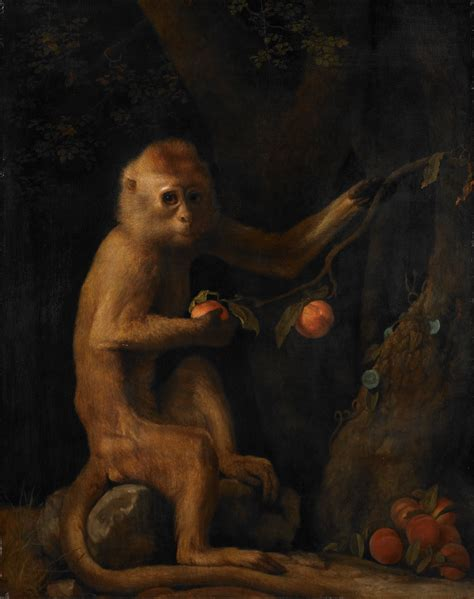 monkey painting file george stubbs a monkey project jpg