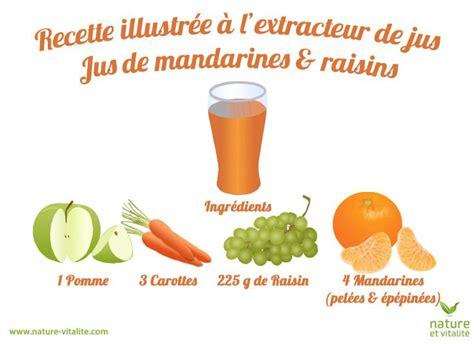 Extracteur De Jus Recette Detox by Les 25 Meilleures Id 233 Es Concernant Jus De Raisin Sur