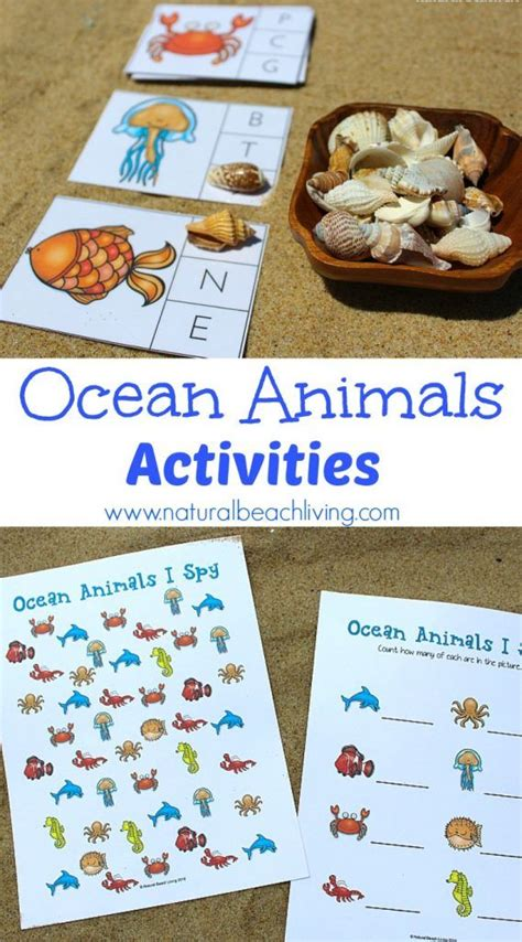 kindergarten activities under the sea 529 best images about under the sea beach themed ideas on