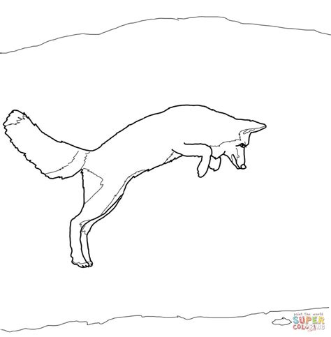 coloring page of arctic fox arctic fox coloring pages
